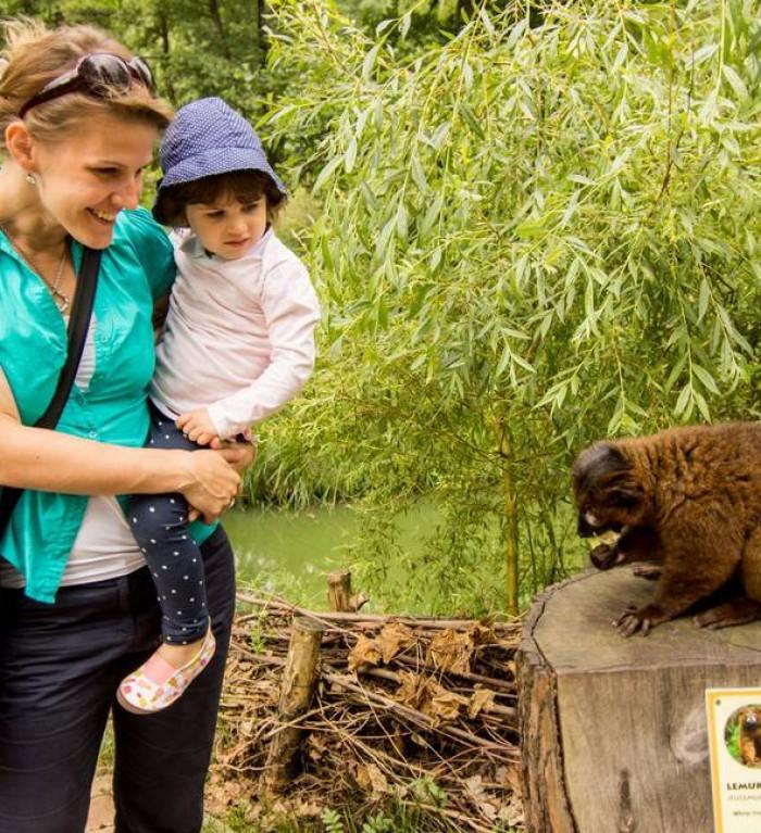 Zoo Ostrava 5